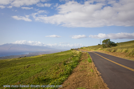 Maui Car Rental Kula Road 2