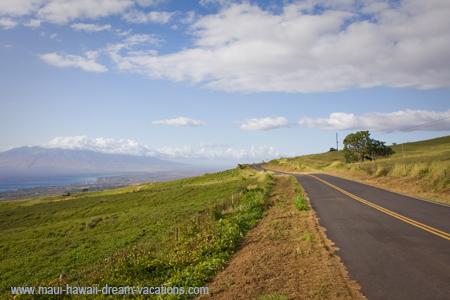 Maui Car Rental Kula Road 2