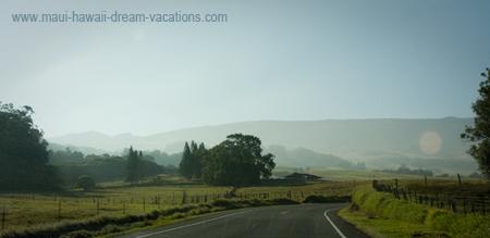Maui Car Rental Kula Road 6