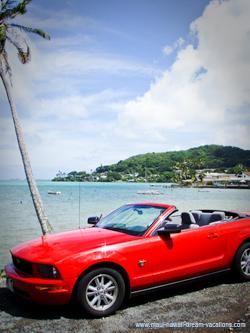 Maui Car Rental Mustang