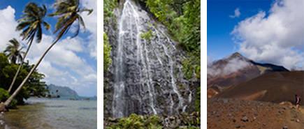 Maui Hawaii Diversity