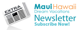 Maui Hawaii Newsletter Icon