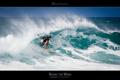 Maui Souvenirs Maui Hawaii Surf Poster
