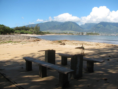 Maui Tsunami Pictures Kanaha Beach Picnic Table