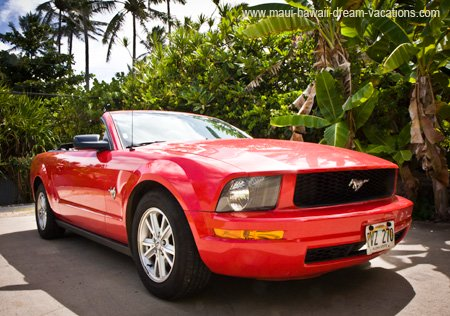 Convertible in Maui Mustang