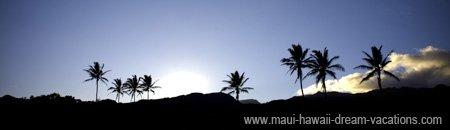 Maui Hawaii Travel Hana Coast