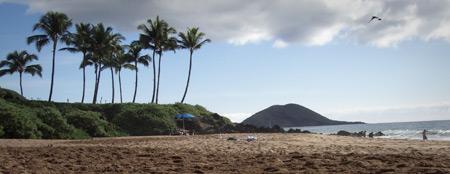 Maui Hi Facts Makena Beach
