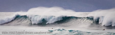 Maui Surf Pictures Big Wave